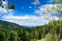 Aspen Vista 2